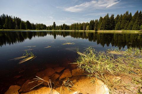 FOTKA - Mýtský rybník.