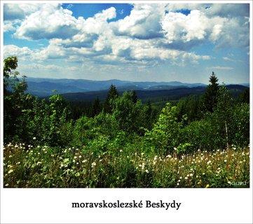 FOTKA - moje toulky přírodou 2