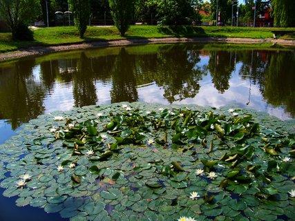 FOTKA - Oáza klidu u rybníku Ohrada v Kunraticích