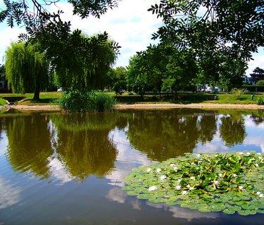 FOTKA - Oáza klidu u malého rybníčku Ohrada v Kunraticích