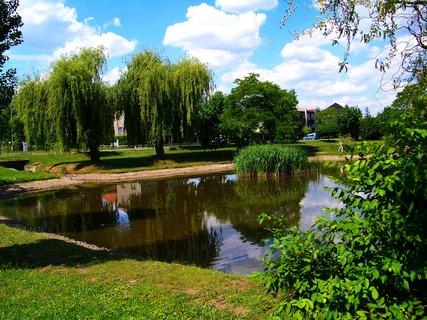 FOTKA - Oáza klidu u malého rybníčku Ohrada ...