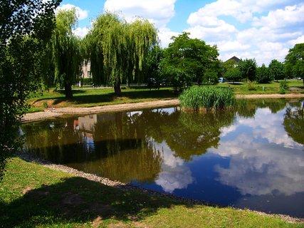 FOTKA - Oáza klidu za dnešního slunného počasí u rybníka......