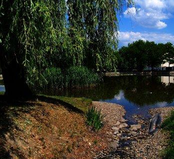 FOTKA - pohled na rybník od přítoku..