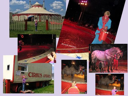 FOTKA - V cirkuse - Koláž