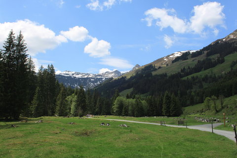 FOTKA - Baumzipfelweg, Saalbach-Hinterglemm 2