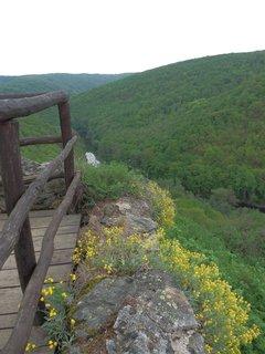 FOTKA - Nový Hrádek u Lukova - výhled do údolí Dyje