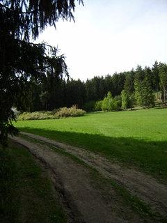FOTKA - louky a lesy
