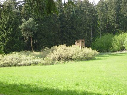 FOTKA - příroda okolo cesty 3