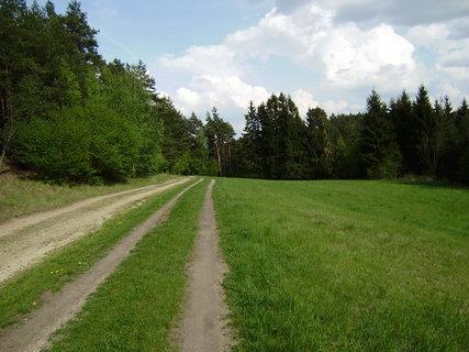 FOTKA - příroda okolo cesty 2