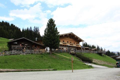 FOTKA - Baumzipfelweg, Saalbach-Hinterglemm 56