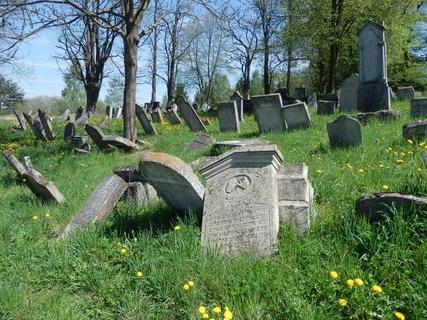 FOTKA - židovský hřbitov za vesnicí Šafov na jižní Moravě