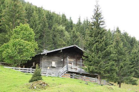 FOTKA - Baumzipfelweg, Saalbach-Hinterglemm 66