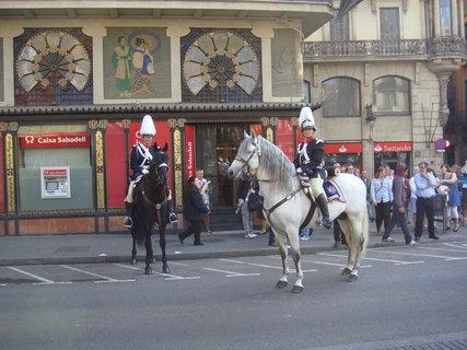 FOTKA - Doprovod na koních