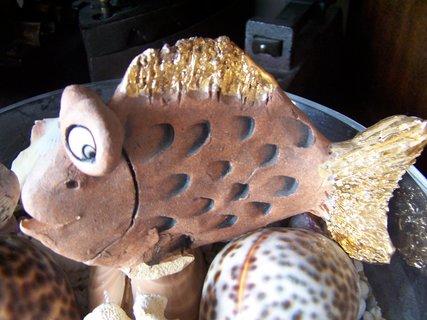 FOTKA - Zlatá rybka