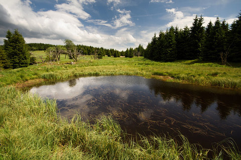 FOTKA - Horský rybníček