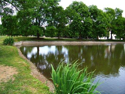 FOTKA - 6.9.2012, rybník Orada, Kunratice