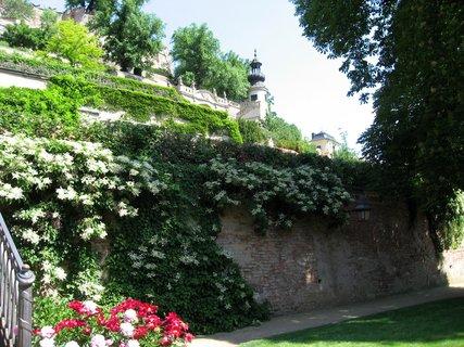 FOTKA - Palácové zahrady pod Pražským hradem 40