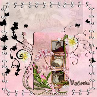 FOTKA - 1-2.6.2012-den po dni -62