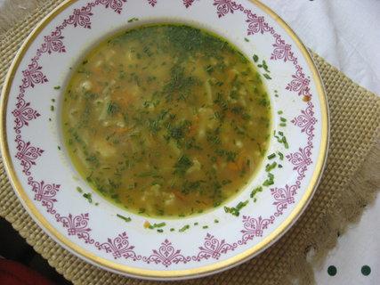 FOTKA - Květáková polévka