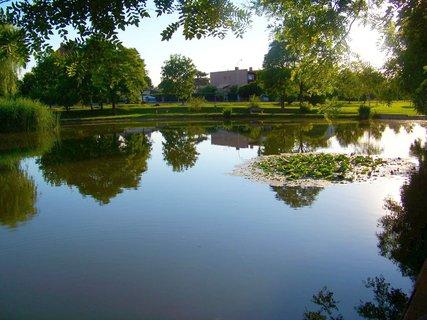 FOTKA - 17.6.2012, u rybníka