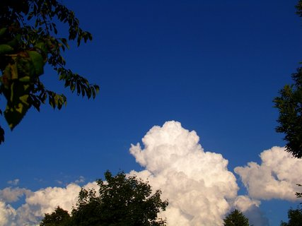 FOTKA - 17.6.2012, mraky mezi stromy u rybníku Ohrada