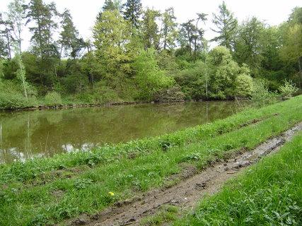 FOTKA - u jednoho z rybníků 2