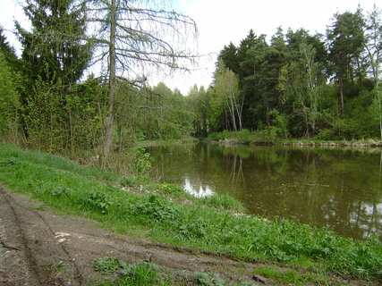 FOTKA - u jednoho z rybníků 3