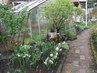 zahrada u skleníku