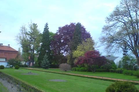 FOTKA - Zámecká zahrada 3