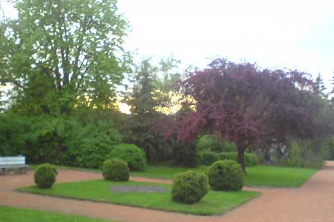 FOTKA - Zámecká zahrada 5