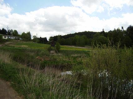 FOTKA - u jednoho z rybníků 4