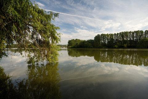 FOTKA - Modlanský rybník