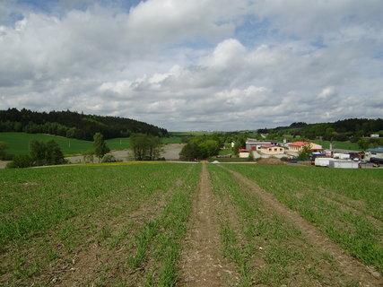 FOTKA - cesta přes pole 4