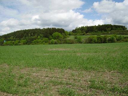 FOTKA - cesta přes pole 5