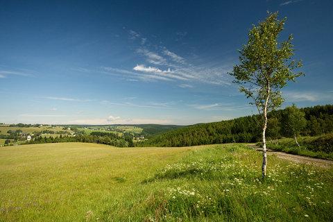 FOTKA - Nad Kalkem - výhled do Německa