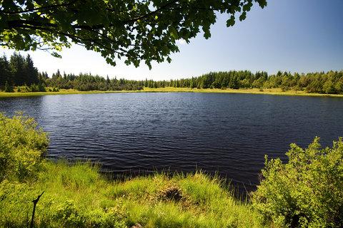 FOTKA - Volárenský rybník,,