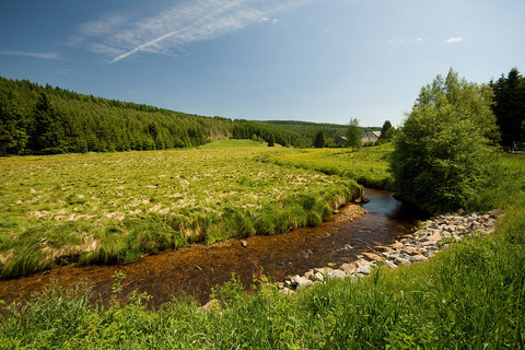 FOTKA - Údolí Načetínského potoka