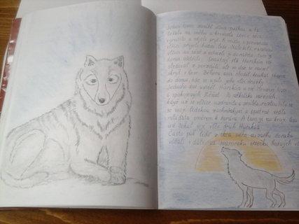 FOTKA - dcerky čtenářský deník