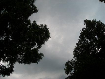 FOTKA - q-léto