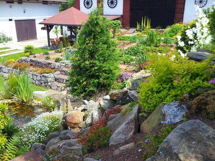 FOTKA - Zahrada 6