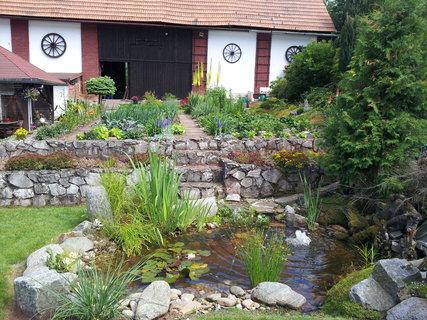 FOTKA - Zahrada 15