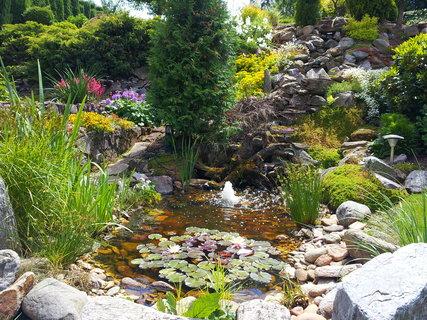 FOTKA - Zahrada 16