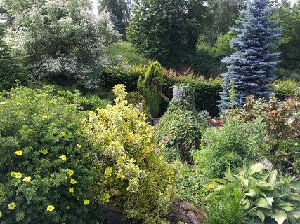 FOTKA - Zahrada 17