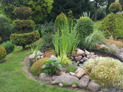FOTKA - Zahrada 23