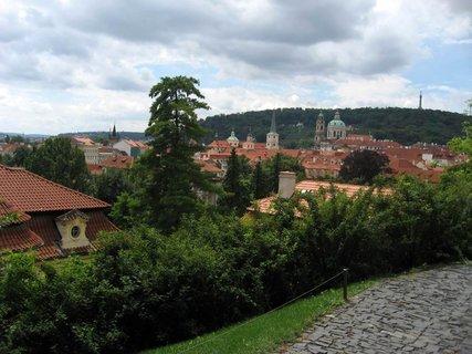 FOTKA - Svatováclavská vinice 61