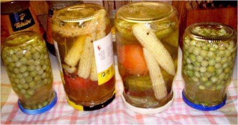 FOTKA - červencové foto-14-zavařená zelenina