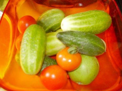 FOTKA - červencové foto-17-jen tak u PC zobám zeleninu
