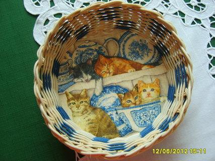 FOTKA - košík s koťátky