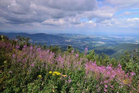FOTKA - Pohled z Lysé hory