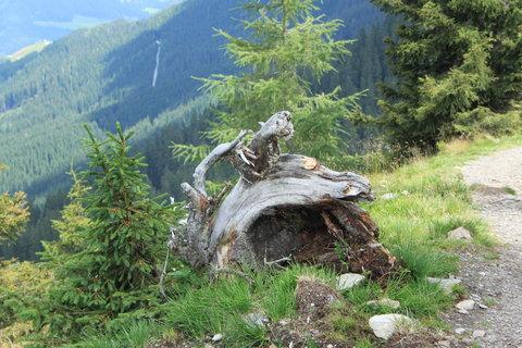 FOTKA - Rodinné putování ze Saalbach Hinterglemm do Leogangu 30